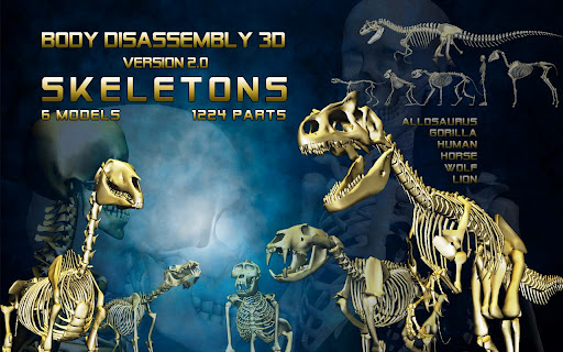Body Disassembly 3D 3.4.1 preview 1