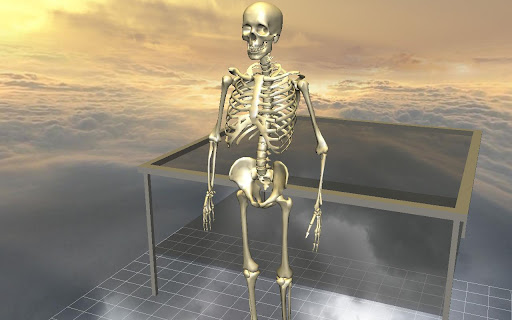 Body Disassembly 3D 3.4.1 preview 2
