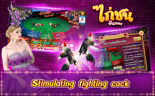 Casino Thai Hilo 9k Pokdeng Cockfighting Sexy game 3.3.363 preview 2