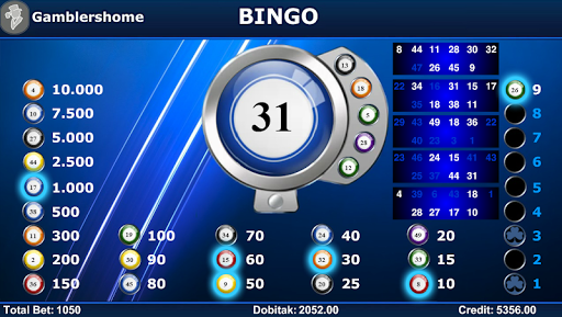 Gamblershome Bingo 2.3.8 preview 1