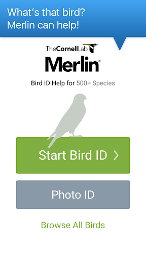 Merlin Bird ID by Cornell Lab of Ornithology 1.6.2 preview 1