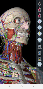 Essential Anatomy 5 preview 1